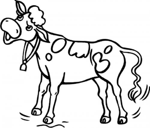 mucca arrabbiata