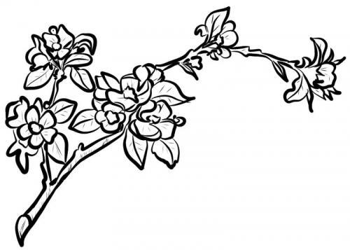 disegni di rami con foglie