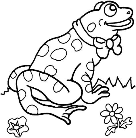 disegni di rana