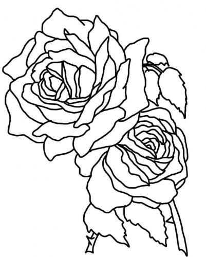 disegni di rose da colorare