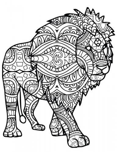 leone disegno