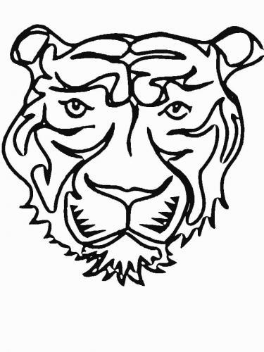 disegni facili da fare di una tigre