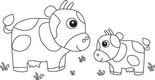 due mucche simpatiche