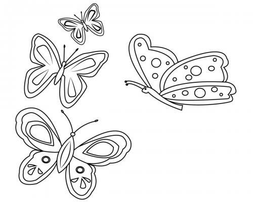 disegni farfalle