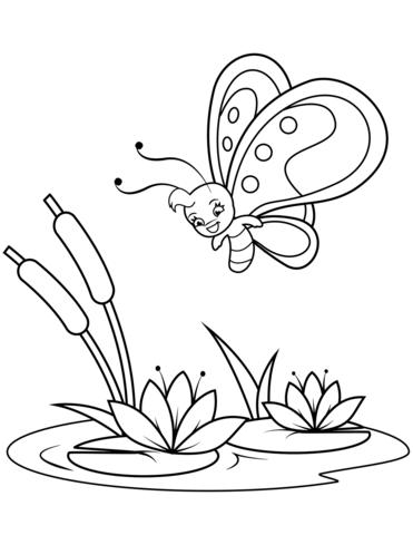 disegni fiori e farfalle