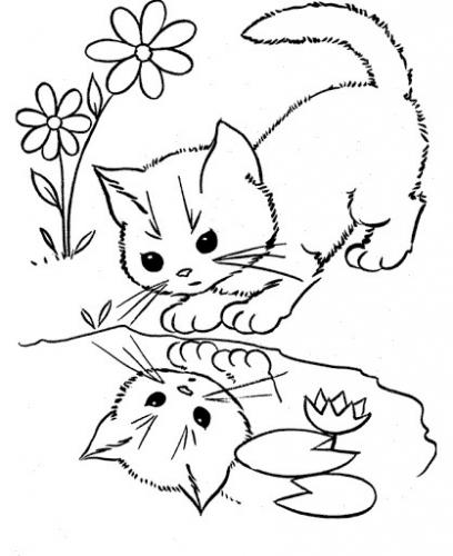 disegni gatti