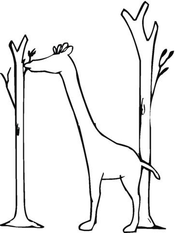 disegni giraffe pdf
