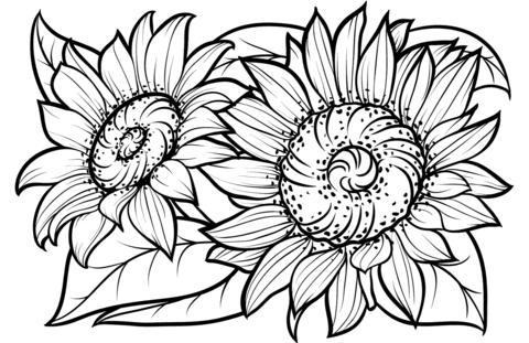 disegni girasoli