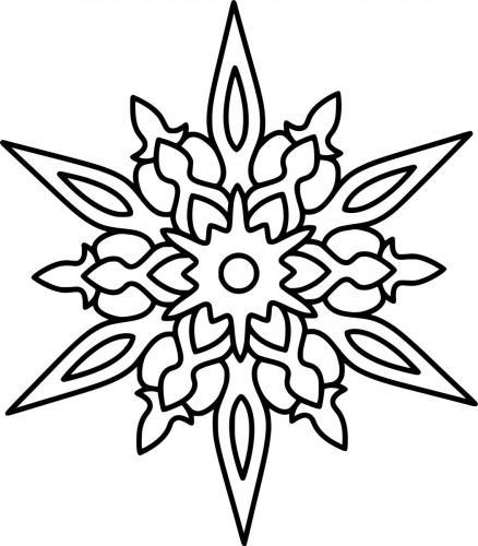 disegni stella di natale