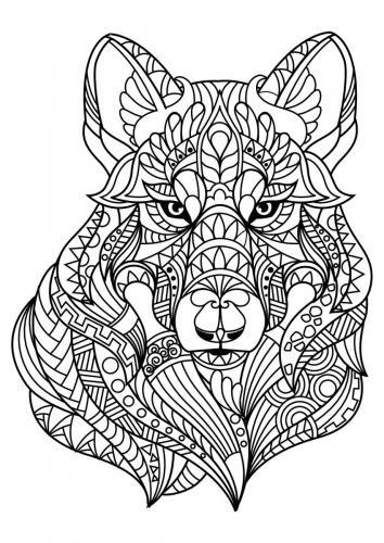 disegni lupo
