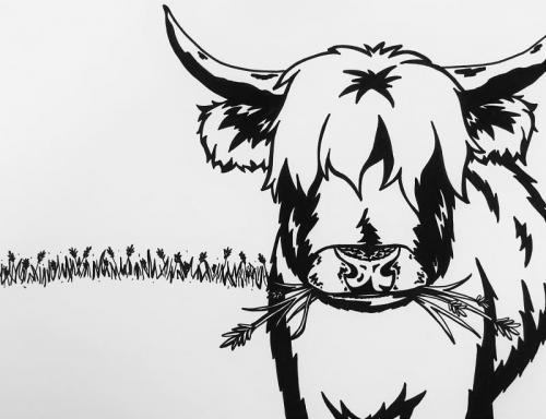 disegno mucca