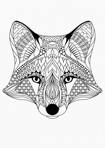 testa di una volpe