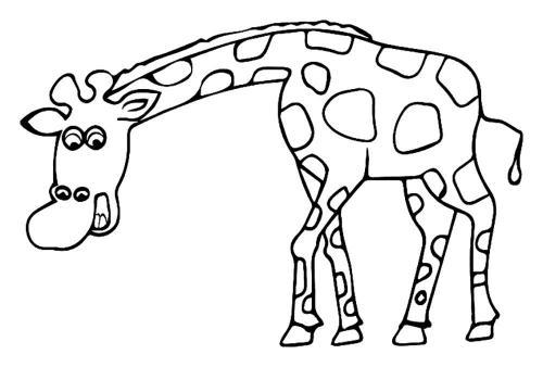 disegni per bambini da colorare giraffa