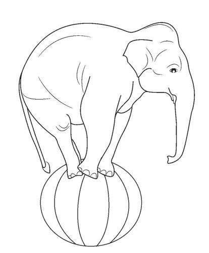 disegni per bambini elefante