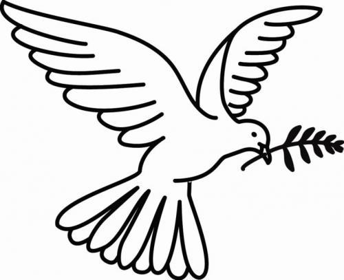immagine della colomba