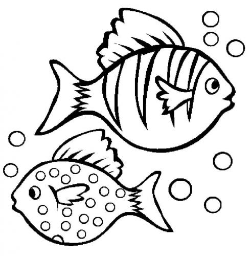pesci tropicali a righe e a pois