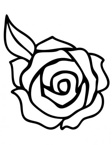 rosa stilizzata senza gambo