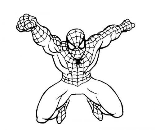 disegni spider man