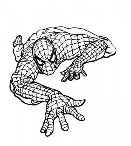 disegni spiderman da colorare on line