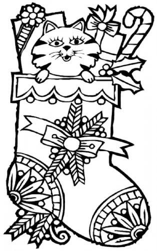La calza della Befana con un gatto