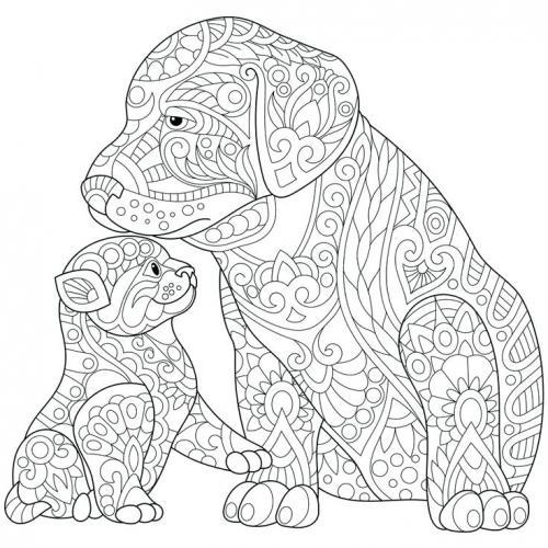 disegno cane