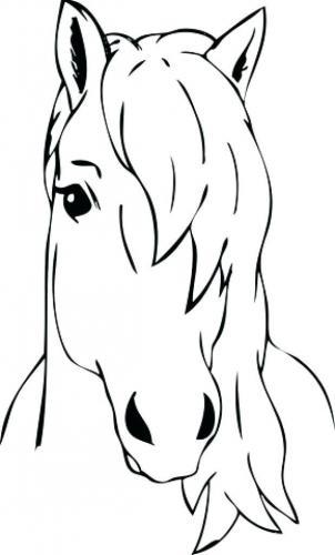 disegno cavallo da colorare