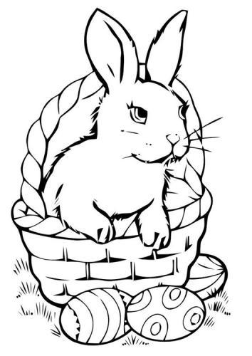 disegno coniglio da colorare