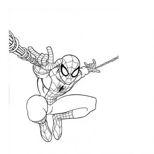disegno da colorare spiderman