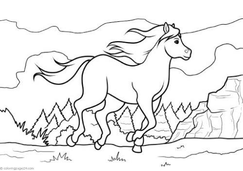 disegno del cavallo