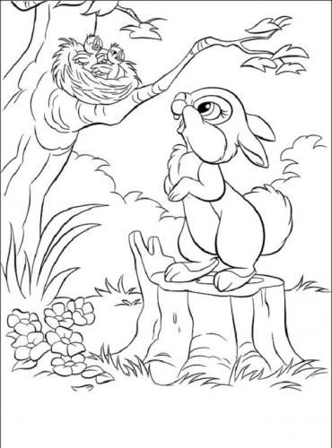 Disegno del coniglio