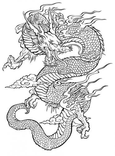 disegno del drago