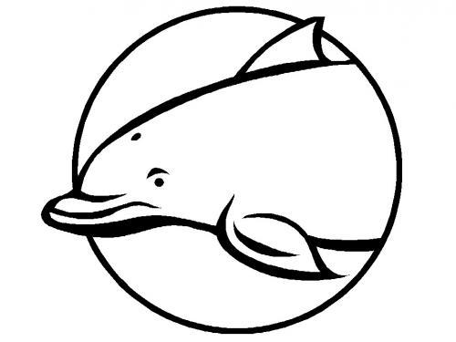 disegno delfino per bambini