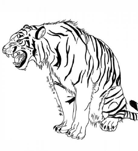 disegno di tigre