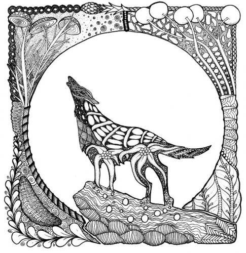 disegno di lupo