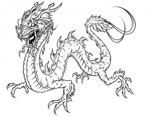 disegno drago
