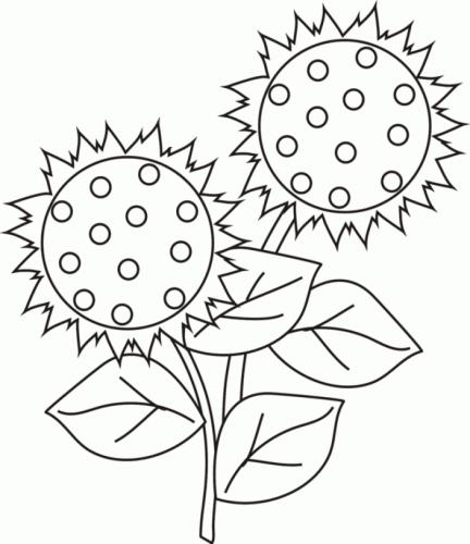 disegno fiori da colorare