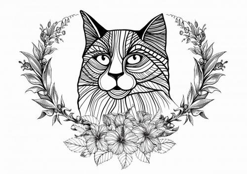 disegno gatto per adulti da colorare