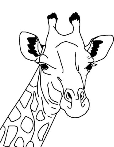 disegno giraffa da colorare