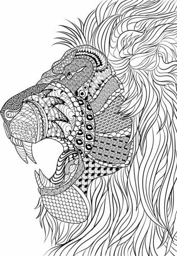 disegno leone per adulti