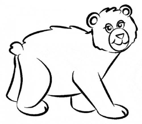 disegno orsetto da colorare