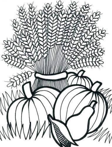 zucche e grano in autunno