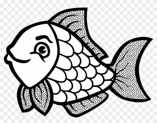 pesciolino che guarda sorridente