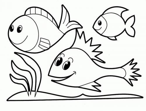 pesci che nuotano insieme