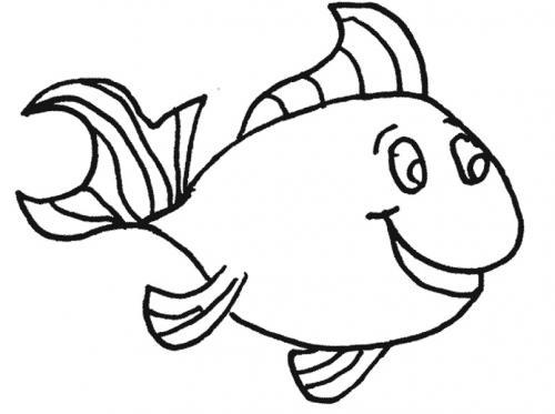 pesce contento
