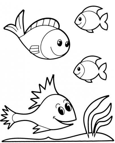 pesci simpaticissimi