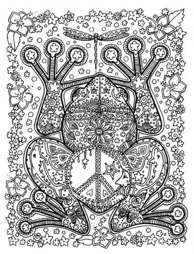 disegno rana da colorare