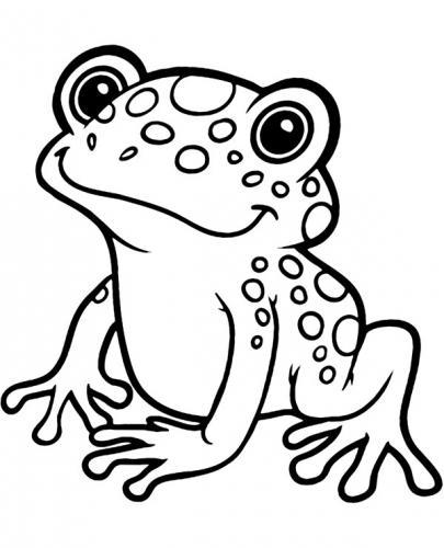 disegno rana per bambini