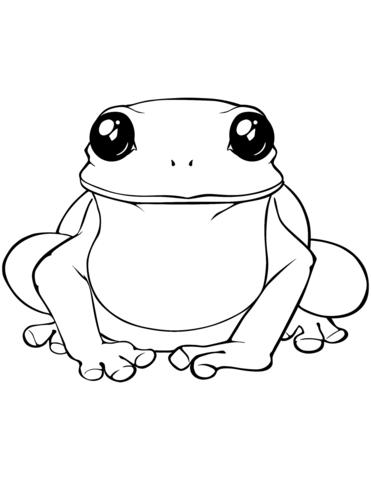 disegno rana
