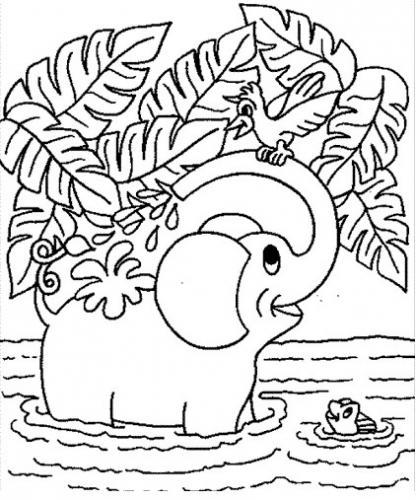 elefante da disegnare