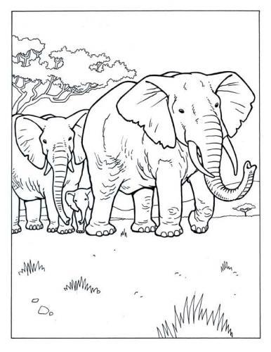 elefante da stampare